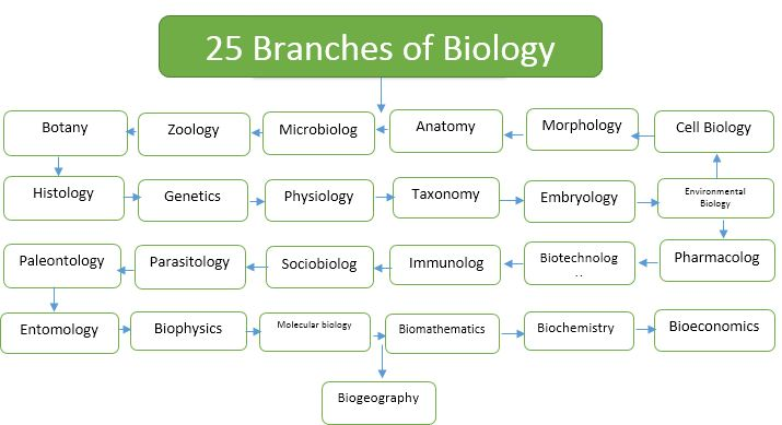 25 Branches of Biology