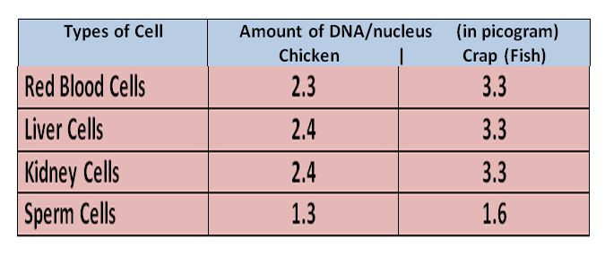 DNA in different cells