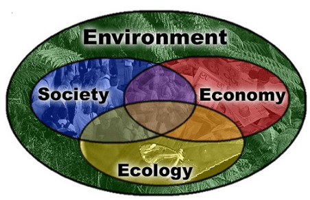 Difference between Environment and Ecosystem